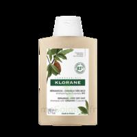 Klorane Beurre Cupuaçu Bio Shampoing Cheveux Très Secs 200ml à Auterive