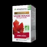 Arkogélules Vigne Rouge Bio Gélules Fl/45 à Auterive