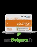 Granions De Selenium 0,96 Mg/2 Ml S Buv 30amp/2ml à Auterive