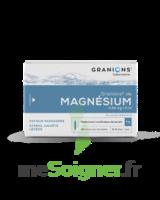 Granions De Magnesium 3,82 Mg/2 Ml S Buv 30amp/2ml à Auterive