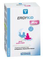Ergykid Mag Poudre Solution Buvable 14 Sachets à Auterive