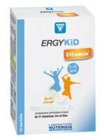 Ergykid Vitamin' Poudre Solution Buvable 14 Sachets à Auterive