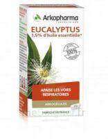 Arkogélules Eucalyptus Gélules Fl/45 à Auterive