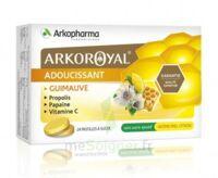 Arkoroyal Propolis Pastilles adoucissante gorge guimauve miel citron B/24 à Auterive