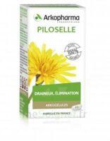 Arkogélules Piloselle Gélules Fl/45 à Auterive