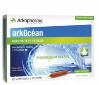 Arkocean Magnesium Marin Solution Buvable Caramel 20 Ampoules/10ml à Auterive