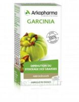 Arkogélules Garcinia Gélules Fl/45 à Auterive