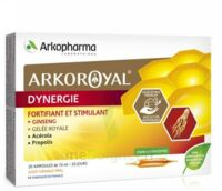 Arkoroyal Dynergie Ginseng Gelée Royale Propolis Solution Buvable 20 Ampoules/10ml à Auterive