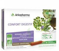 ARKOFLUIDE BIO ULTRAEXTRACT Solution buvable confort digestif 20 Ampoules/10ml à Auterive