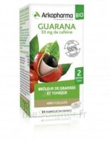 Arkogélules Guarana Bio Gélules Fl/45 à Auterive