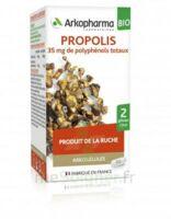 Arkogélules Propolis Bio Gélules Fl/45 à Auterive