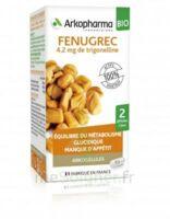 Arkogélules Fenugrec Bio Gélules Fl/40 à Auterive