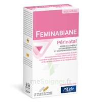 Pileje Feminabiane Périnatal 28 Gélules Blanches Et 28 Gélules Jaunes à Auterive