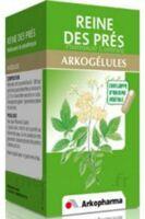 Arkogelules Reine Des Prés Gélules Fl/45 à Auterive