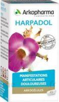 Arkogelules Harpagophyton Gélules Fl/150 à Auterive