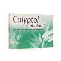 CALYPTOL INHALANT, émulsion pour inhalation par fumigation à Auterive