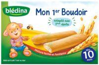 Bledina Mon 1er boudoir (6x4 biscuits) à Auterive