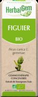 Herbalgem Figuier Macerat Mere Concentre Bio 30 Ml à Auterive