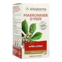 Arkogelules Marronnier D'inde Gélules Fl/150 à Auterive