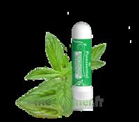 PURESSENTIEL RESPIRATOIRE Inhalation nasal 19 huiles essentielles à Auterive