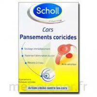 Scholl Pansements coricides cors à Auterive