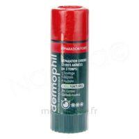 Dermophil Indien Réparation Forte Lèvres 4 g à Auterive