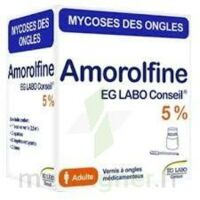AMOROLFINE EG 5 % V ongles médicamenteux 1Fl/2,5ml+10 spat à Auterive