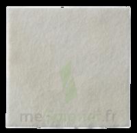 Biatain Alginat Pansement Absorbant 10x10cm B/10 à Auterive