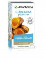 Arkogelules Curcuma Pipérine Gélules Fl/45 à Auterive