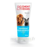 Clément Thékan Shampooing peaux sensibles T/200ml à Auterive