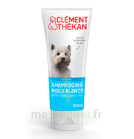 Clément Thékan Shampooing Poils Blancs T/200ml à Auterive
