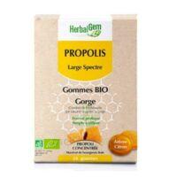 Herbalgem Propolis large spectre Gomme bio B/24 à Auterive