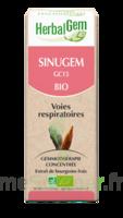 Herbalgem Sinugem Solution buvable bio Fl cpte-gttes/30ml à Auterive
