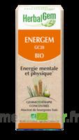 Herbalgem Energem Solution Buvable Bio Fl Cpte-gttes/30ml à Auterive