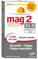 Mag 2 24h Comprimes B/45+15 Offert à Auterive