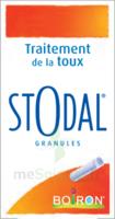 Boiron Stodal Granules Tubes/2 à Auterive