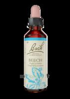 Fleurs De Bach® Original Beech - 20 Ml à Auterive