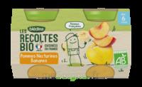 Blédina Les Récoltes Bio Pommes Nectarines Bananes 2 Pots/130g à Auterive