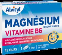 Govital Magnésium Vitamine B6 Comprimés B/45 à Auterive