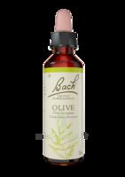 Fleurs De Bach® Original Olive - 20 Ml à Auterive