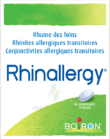 Boiron Rhinallergy Comprimés B/40 à Auterive