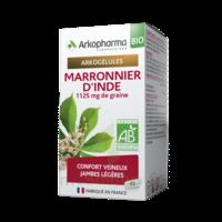 Arkogélules Marronnier D'inde Bio Gélules Fl/45 à Auterive