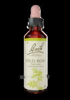Fleurs De Bach® Original Wild Rose - 20 Ml à Auterive