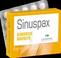 Lehning Sinuspax Comprimés à Croquer 3plq/20 à Auterive