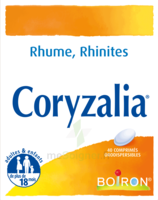 Boiron Coryzalia Comprimés Orodispersibles à Auterive