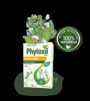 Phytoxil Toux Sans Sucre Sirop Adulte Enfant +6 Ans 12 Sachets/10ml à Auterive