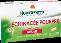 Echinacee Pourpre Humexphyto Cpr Pell Plq/20 à Auterive
