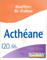 Boiron Acthéane Comprimés B/120 à Auterive